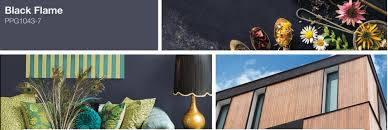 ppg paints color of the year 2018 black flame norberg paints