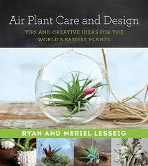 amazon com house plants books