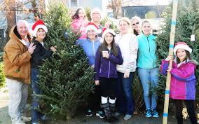 tis the season for arlington groups to sell christmas trees