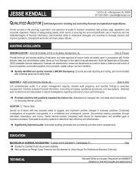 Project Accountant Resume Sample by Resume Format For Accountant
