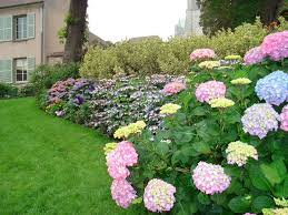 Simple Landscape Ideas by Lawn U0026 Garden Charming Pink Blue Yellow Garden Landscape Ideas