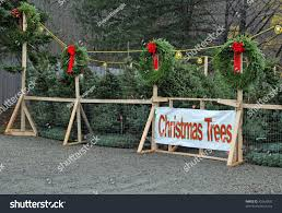 christmas trees sale stock photo 42064825 shutterstock