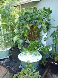 backyard tower garden tower garden aeropoinc vegatable growing