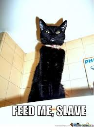 Feed Me Meme - feed me slave by 123sagada321 meme center