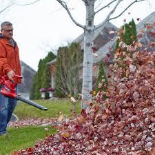 great fall gardening tools hgtv