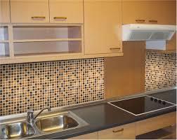 tiles ideas for kitchens astonishing kitchen tiles design images india 15 best kitchen tile