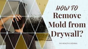 how to remove mold from drywall ways to remove mold and mildew
