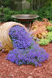 Backyard Corner Landscaping Ideas by 116 Best Plant Life Images On Pinterest Gardening Plants And
