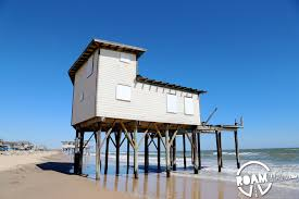 surfside beach texas roam lab