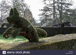 Elephant Topiary Animal Topiary Stock Photos U0026 Animal Topiary Stock Images Alamy