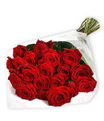 2 dozen roses 2 dozen roses palm roses