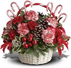 port florist new port richey florist christmas flowers new port richey florist
