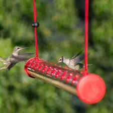 bird feeder seed garden treasures glass hummingbird feeder