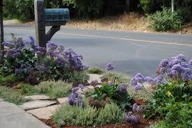 Sidewalk Garden Ideas Landscaping For Sidewalks Hgtv
