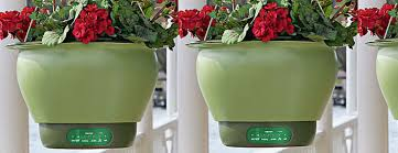 self watering smart planter the green head