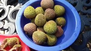 lychee fruit peeled what is lychee how to eat lychee fruit youtube