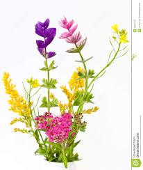 clip art wild flowers u2013 clipart free download