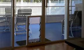 doggy door glass door choosing between maxseal in glass pet doors