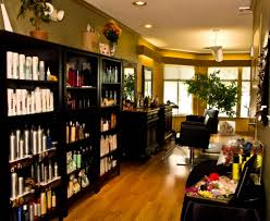 lisalon hair salons 412 e upland rd ithaca ny phone number