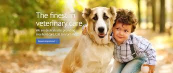 blue cross dog u0026 cat hospital veterinarian animal hospital in