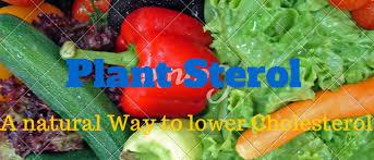 list of cholesterol lowering drugs