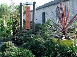halls garden center u0026 florist summer plant gallery