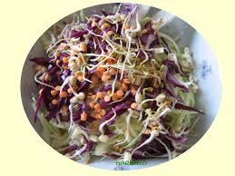 comment cuisiner les pousses de soja salade de choux aux pousses de soja ma nature 2