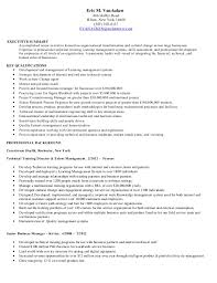 Executive Summary Example For Resume by Executive Summary Example Resume 9 Executive Summary Sample