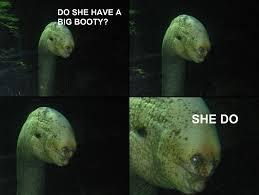 Do She Got A Booty Meme - image 561628 do she got a booty she do know your meme