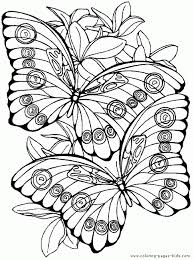 butterfly mandala coloring pages perfect coloring butterfly