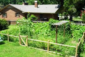 Deer Proof Fence For Vegetable Garden Vegetable Garden Fence Ideas Home
