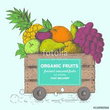 fresh fruit delivery fast delivery of fresh fruits the box on wheels with fruits