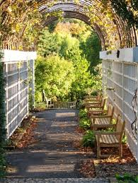 Vine Trellis Ideas Add Drama And Character To Your Walkways Jsl Exteriors Landscape