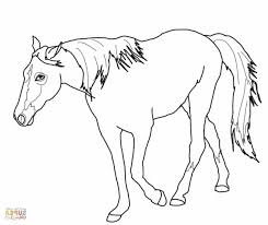bmx coloring pages printable coloring pages horses printable coloring sheet of a