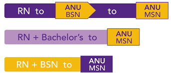 master of science in nursing american national university anu