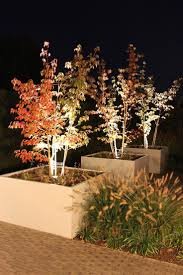 In Lite Landscape Lighting by 1510 Best Light G Images On Pinterest Landscape Lighting
