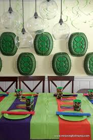 best 25 turtle decorations ideas on