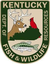 Kentucky wildlife images Kentucky department of fish wildlife wmky jpg