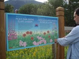 blackfoot native plants montana wildlife gardener community native plant garden
