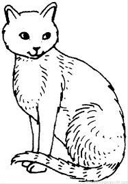 coloring page of a kitty coloring pages of cats cats and dogs movie colouring pages pictures