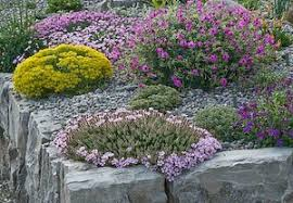 Rock Gardening Rock Gardening Tips For Small Spaces