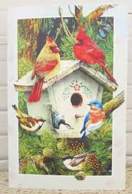 pumpernickel greeting cards birthday greeting card cardinals chickadee bluebird bible