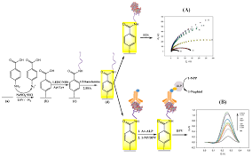 chemosensors free full text aptamer based electrochemical