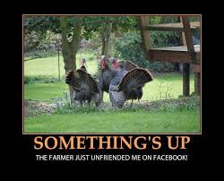 Funny Thanksgiving Meme - happy funny thanksgiving 2017 funny thanksgiving pictures and