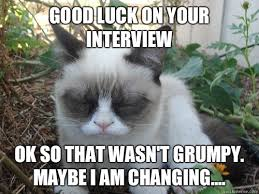 Good Luck Cat Meme - good luck on your interview ok so that wasn t grumpy maybe i am