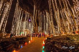 Chicago Botanic Garden Events Light Show Rotary Botanical Gardens 1455 Palmer Drive