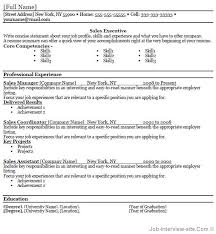 Best Resume Formats 40 Free by Sales Resume Template Word Free 40 Top Professional Resume