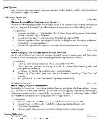 Building A Professional Resume Download A Professional Resume Haadyaooverbayresort Com