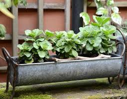 zinc metal window box or trough planter vintage garden indoor or