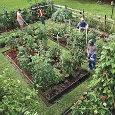 Potager Garden Layout Plans Design Vegetable Garden On Potager Garden Featured In Southern